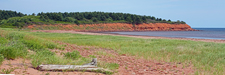 Red Sandstone Cliffs at New Rustico Beach - PEI